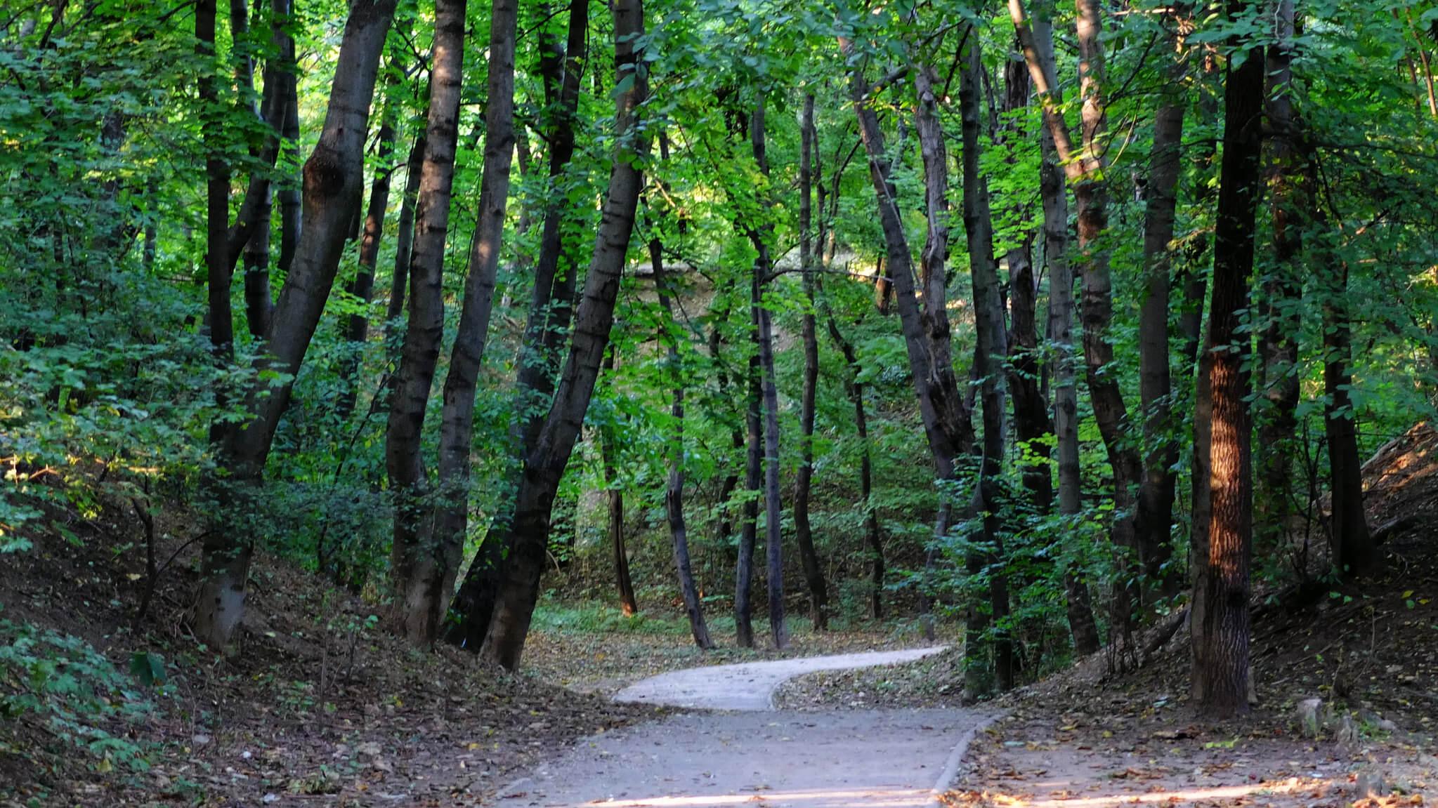 A természet és a kiváló infrastruktúra a II. és a III. kerület határán találkozik