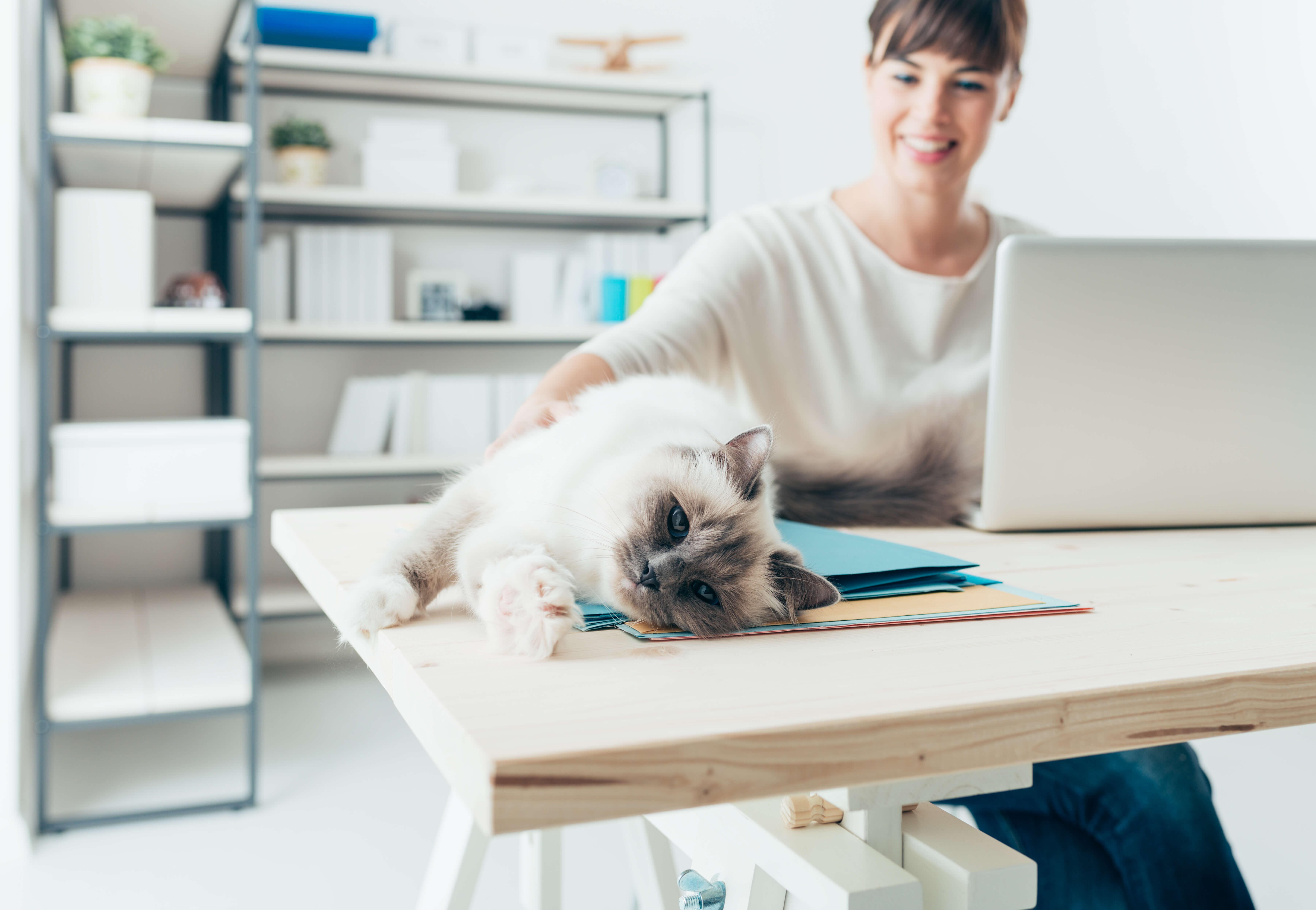 Mutatjuk: így lehet hatékony az otthoni munka keddtől