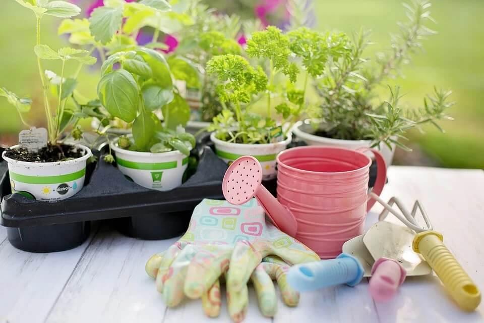 Ennél jobb időszakot nem is találhatnánk arra, hogy megszerettessük a gyerekekkel a kertészkedést
