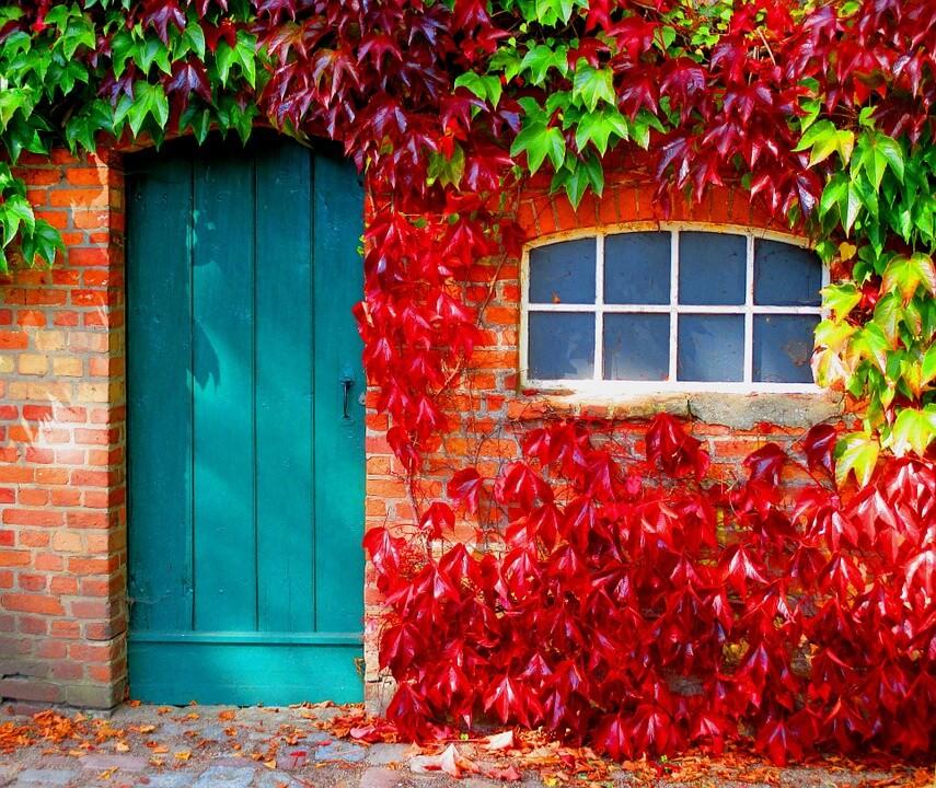 Hirdesd az otthonod ősszel is sikerrel!