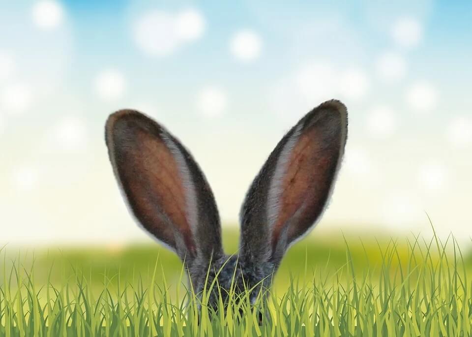 Találd meg a 2. húsvéti tojást a Foka-öbölben!