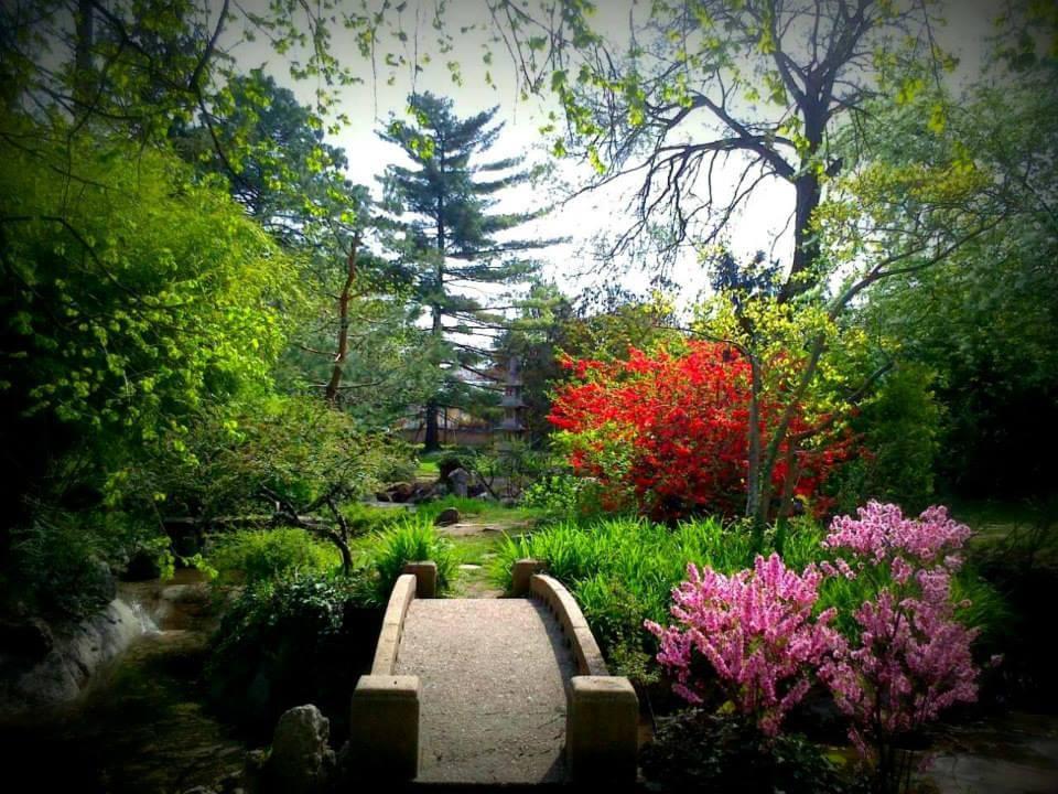 Ilyen egy családi ház Pest egyik legelegánsabb kertvárosában